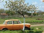 Moskvich at spring